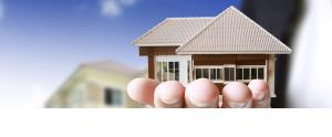 Banner Oxford usa need Updates.jpgSlide Oxford Realty homes for Sales negocios na Florida USA imoveis na Florida Estados Unidos sales rental compra venda de imoveis